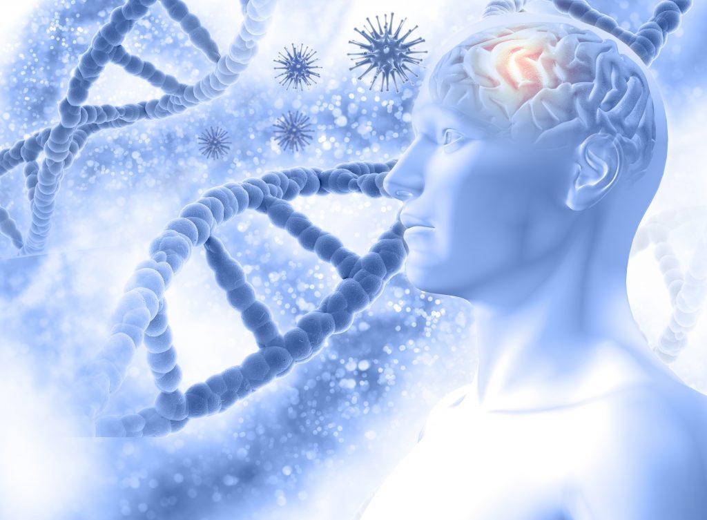 Neurotické poruchy a terapie Klára Hanzalová